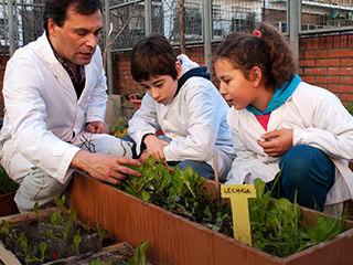 Imagen ilustrativa Educación Alimentaria Nutricional