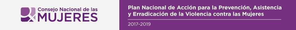 Banner ilustrativo sobre el anuncio del Plan Nacional de Acción para la Prevención, Asistencia y Erradicación de la Violencia contra las Mujeres 2017 - 2019 (LEY 26.485)