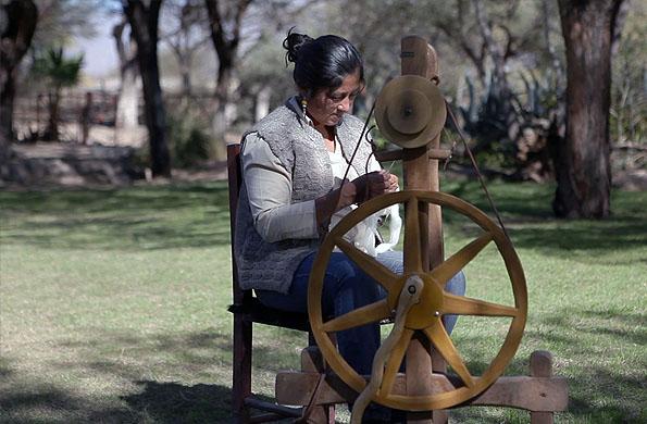 La cooperativa está ubicada en los Valles Campesinos, provincia de Salta.