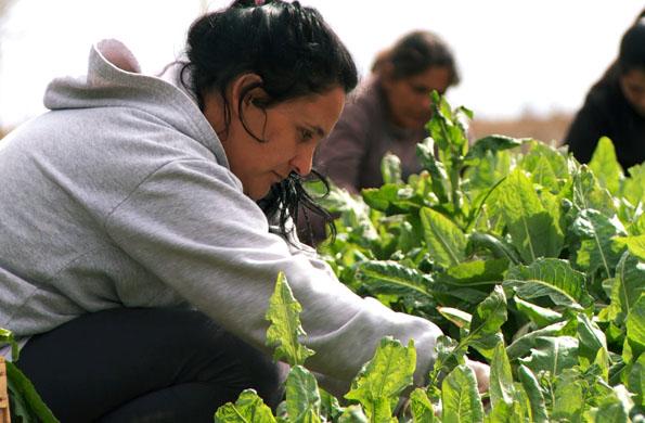 Huerta orgánica y talabartería Monte Maíz es otro emprendimiento de Córdoba.