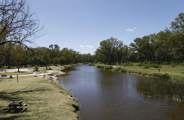 En 2008, el Gobierno nacional puso en marcha el plan de recuperación de los Bosques de Ezeiza.