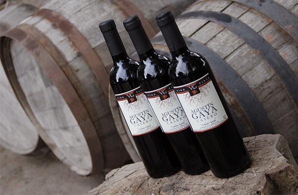 Gaya es uno de los 40 emprendedores que integran la Asociación de Elaboradores de Vino Artesanal.