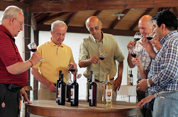 Colección Suero es un emprendimiento familiar oriundo de la provincia de San Juan.