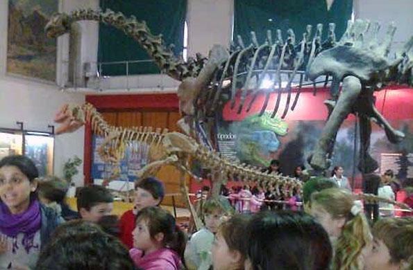 El grupo de alumnos recorriendo el museo de ciencias naturales.
