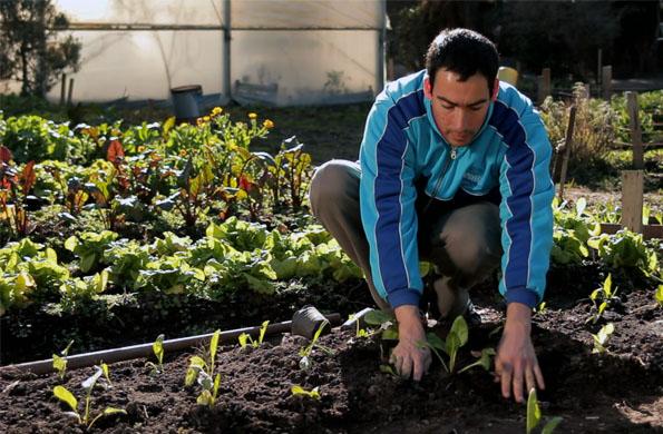 Granja Andar dispone de una huerta orgánica que agrega valor a su cocina natural.