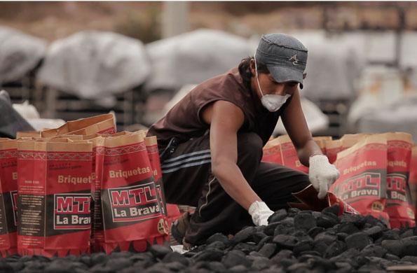 MTL La Brava se dedica a la producción de carbón vegetal y briquetas.