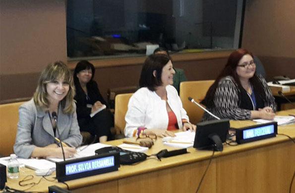 CONADIS participó del encuentro de accesibilidad electoral en Naciones Unidas.