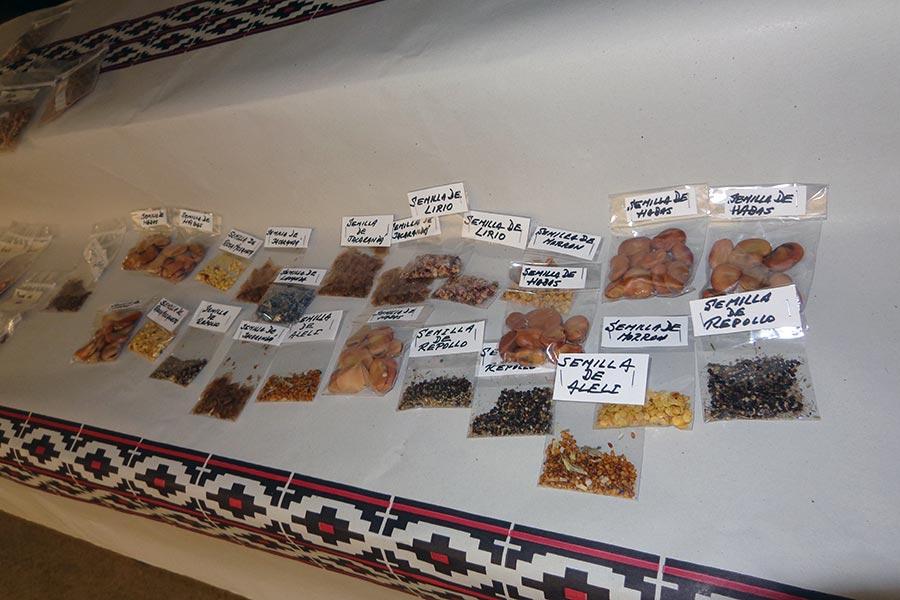 El objetivo fue generar un espacio de encuentro para intercambio de semillas y saberes .