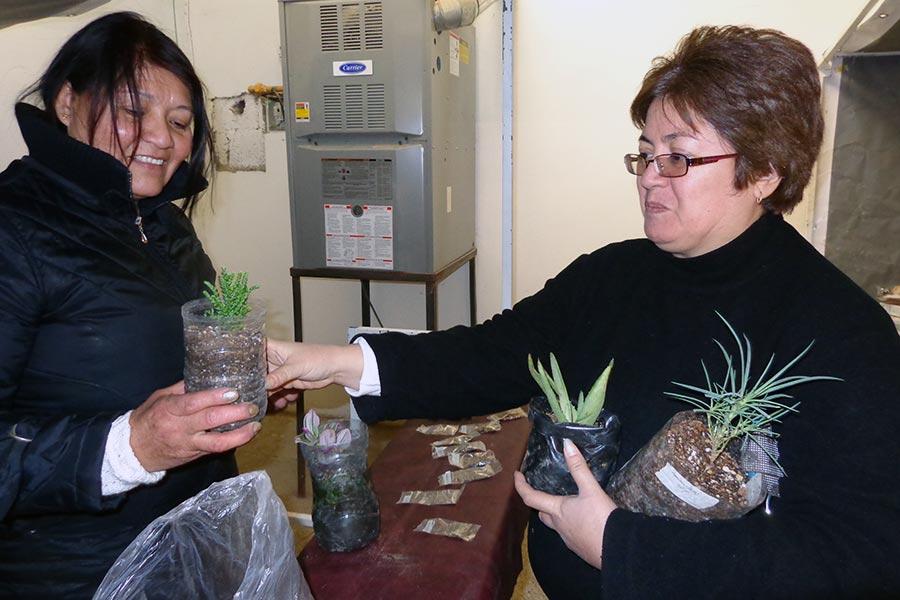 Se realizó la tercera feria regional de intercambio de semillas en Santa Cruz.