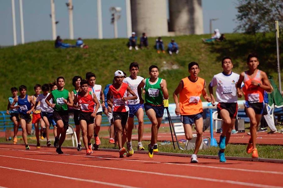 Niñas, niños, jóvenes y adultos mayores demostrarán su talento en 26 disciplinas deportivas.