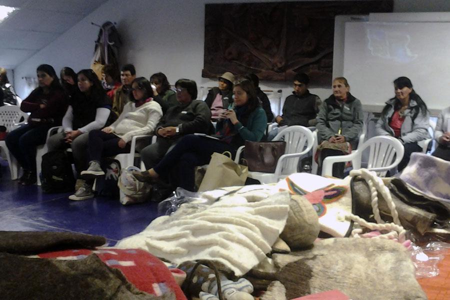 El objetivo fue debatir sobre cómo fortalecer la cadena productiva de la lana.