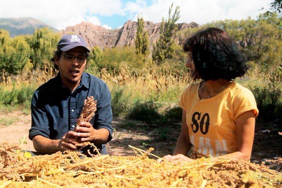 """El capítulo """"En el Altiplano"""" aborda la historia de un grupo de productores de la puna que trabajarán para obtener una buena cosecha."""