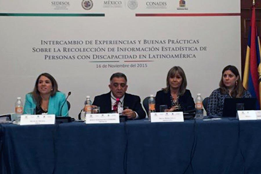 Participa de la reunión la titular de la Conadis, Silvia Bersanelli.