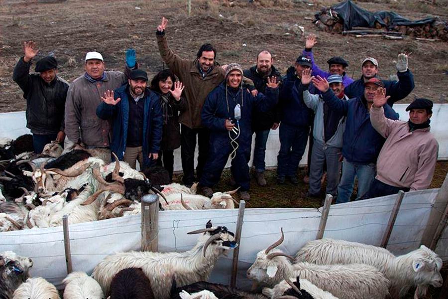 Los miembros del equipo que implementó el proyecto (Fotografía: Alejandra Bartoliche).