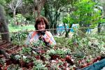 Imagen de la horticultora Graciela Schule entre las plantas de su vivero.