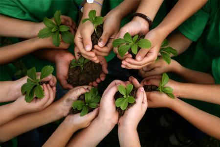 Imagen ilustrativa de personas con plantas en las manos