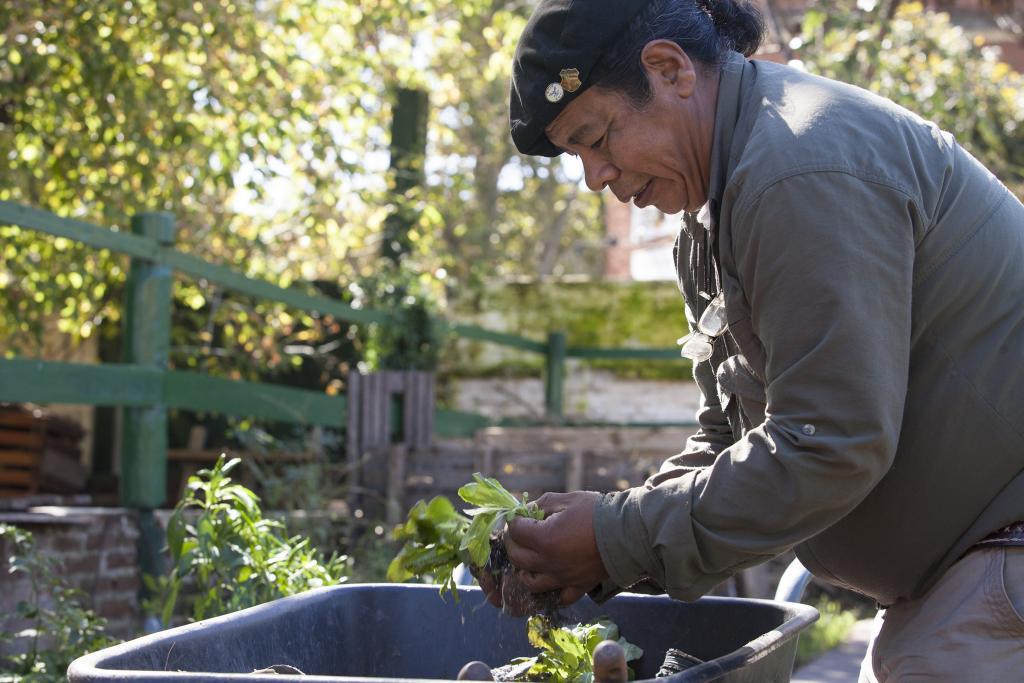 Fotografía ilustrativa de un hombre trabajando en la huerta.