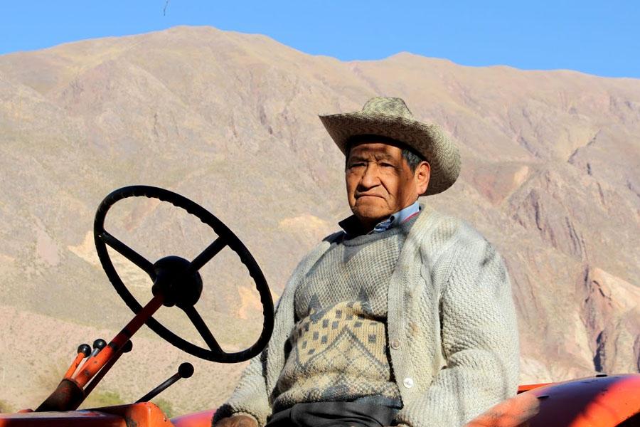 Los campesinos buscaron variedades de maíz en las fincas de la zona.