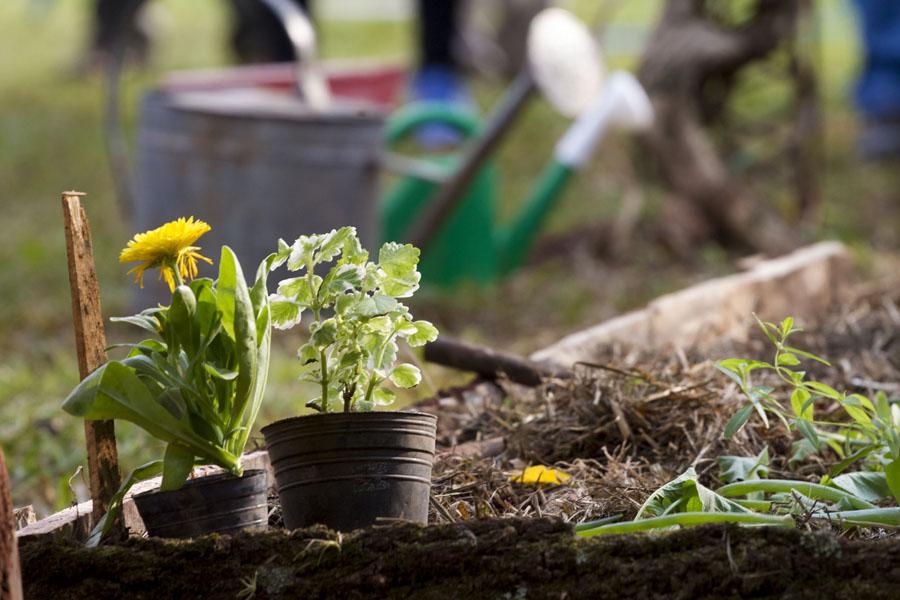 El objetivo del encuentro es que los vecinos puedan conseguir hortalizas frescas, directo de los productores.