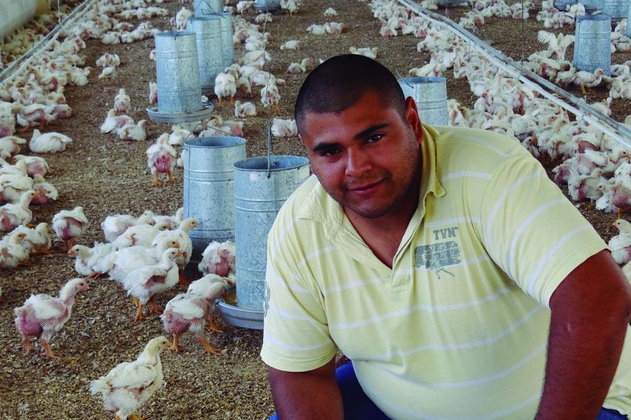 La idea de poner en marcha una cooperativa de producción avícola nació mientas cursaban la secundaria.
