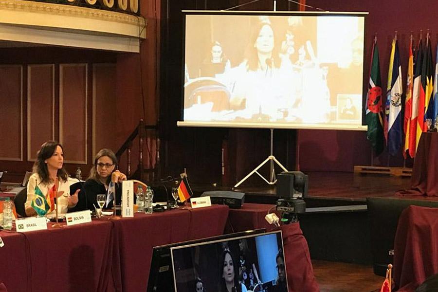 imagen de Carolina Stanley durante la reunión