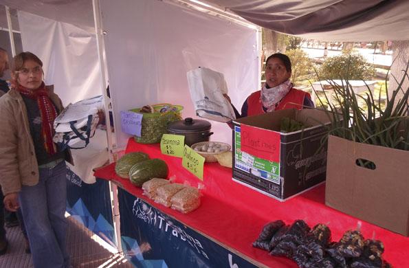 Emprendedores de Santa María comercializan sus productos todo el año
