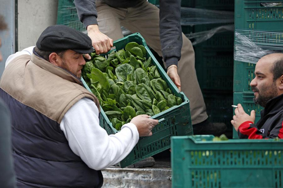 Imagen de Feria agroecológica