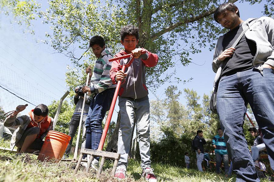 Imagen ilustrativa de chicos cultivando la tierra