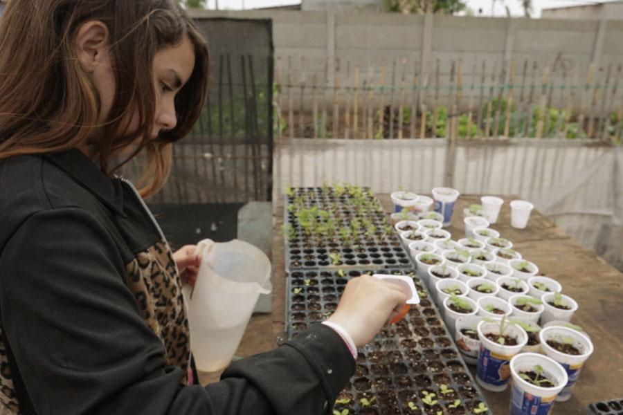 Fotografía ilustrativa de una chica regando plantines.