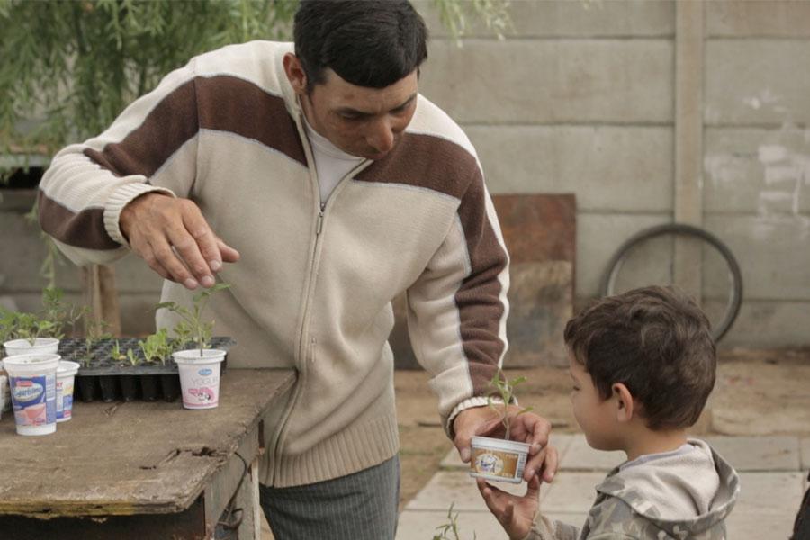 Fotografía ilustrativa de un señor dándole plantines a su hijo.