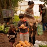 Imagen ilustrativa de niños con verduras de una huerta